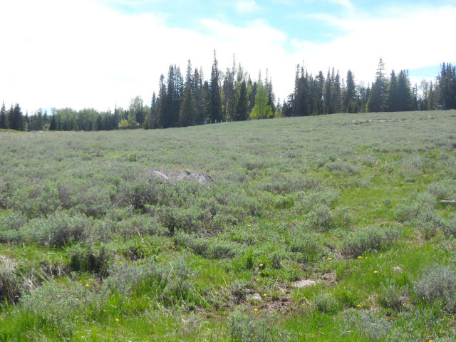 BRIAN HEAD REAL ESTATE, Land for sale overlooking Meadow Lake